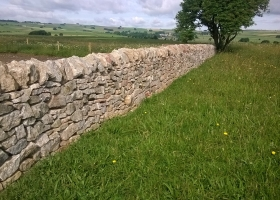 dry stone walling at Mandale quarry in the peak district