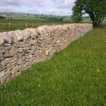 dry stone walling 2