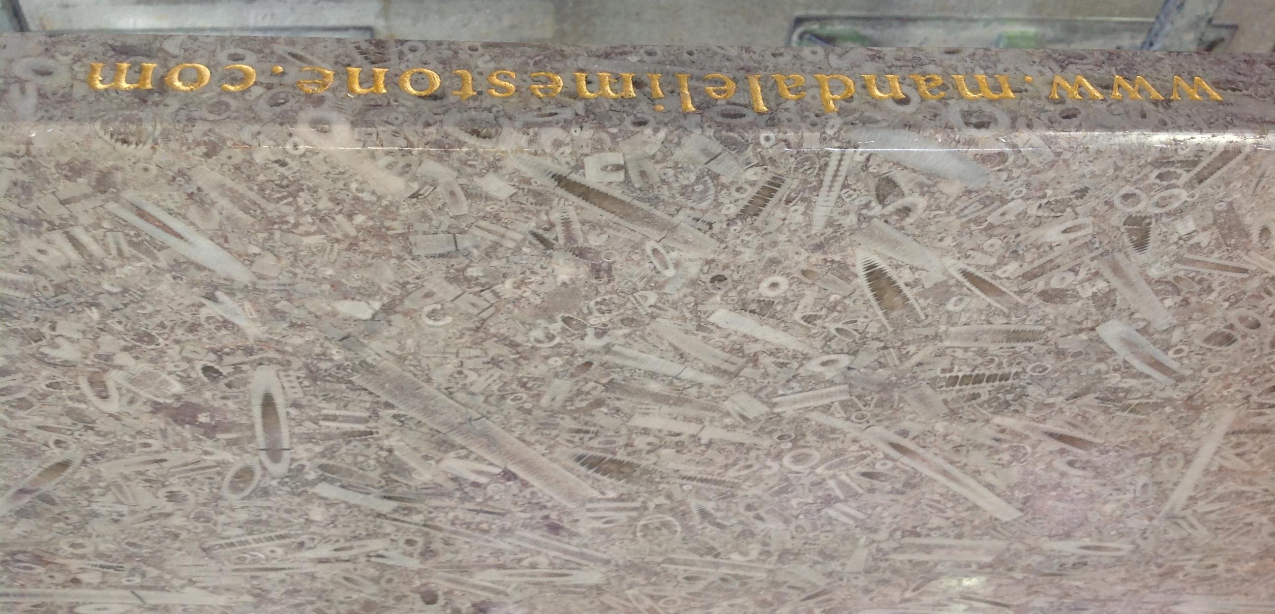 mandale Derbyshire Fossil Limestone